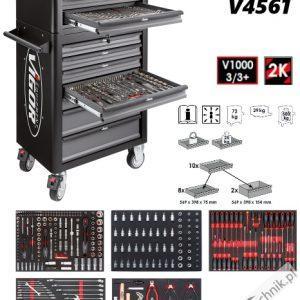 V4561 300x300